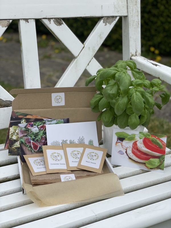 herb seed box