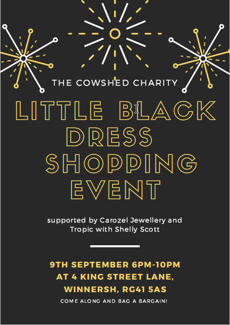 Little Black Dress Shopping Event